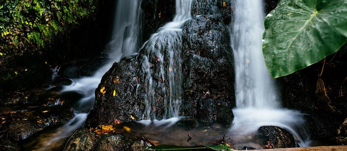 Ayun River (Hatanur) Nature Reserve